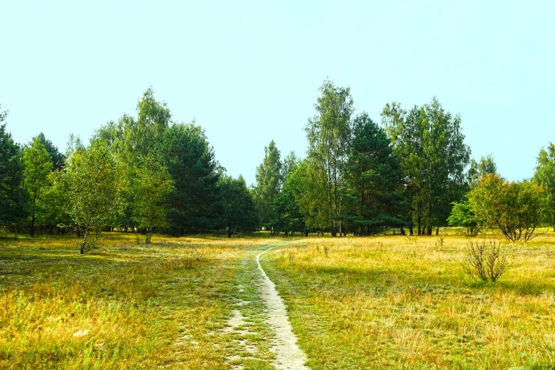 late-summer-walkway-1637511-1279x853